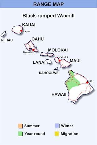 Range Map Hawaii for Black-rumped Waxbill