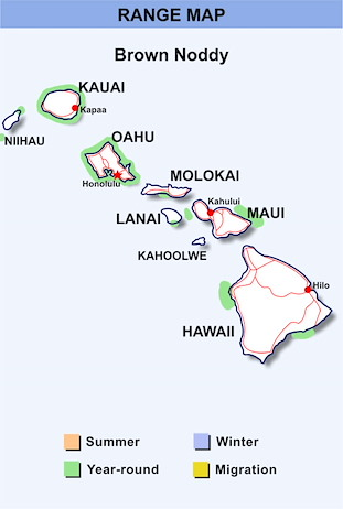 Range Map Hawaii for Brown Noddy