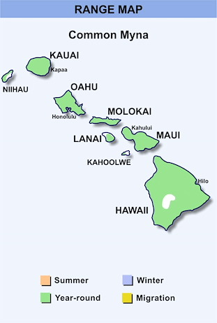 Range Map Hawaii for Common Myna