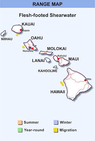 Range Map Hawaii for Flesh-footed Shearwater