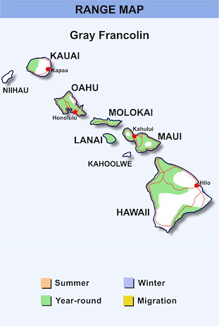Range Map Hawaii for Gray Francolin