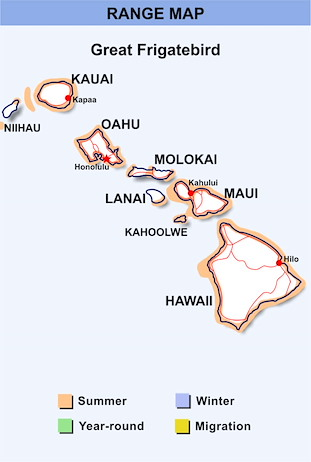 Range Map Hawaii for Great Frigatebird