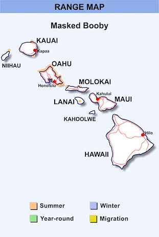 Range Map Hawaii for Masked Booby