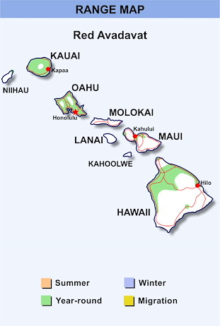 Range Map Hawaii for Red Avadavat