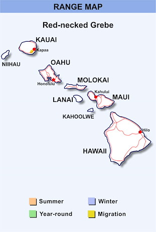 Range Map Hawaii for Red-necked Grebe