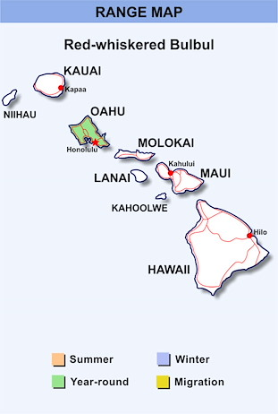 Range Map Hawaii for Red-whiskered Bulbul