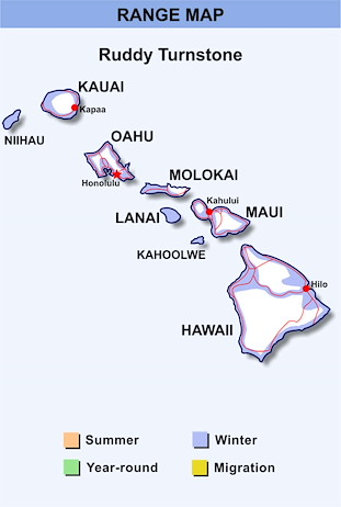 Range Map Hawaii for Ruddy Turnstone