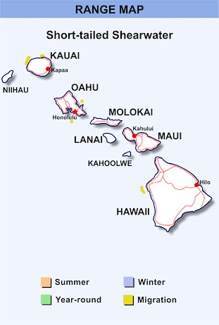 Range Map Hawaii for Short-tailed Shearwater