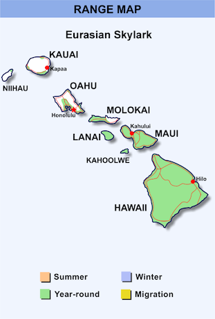 Range Map Hawaii for Eurasian Skylark.png