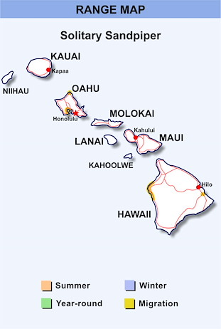 Range Map Hawaii for Solitary Sandpiper