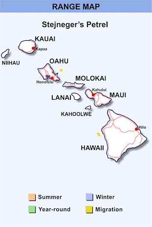 Range Map Hawaii for Stejneger's Petrel