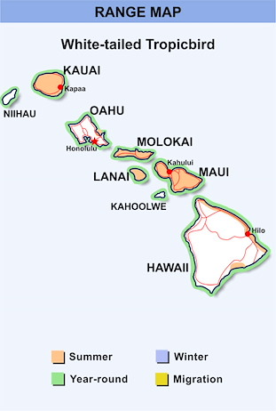 Range Map Hawaii for White-tailed Tropicbird