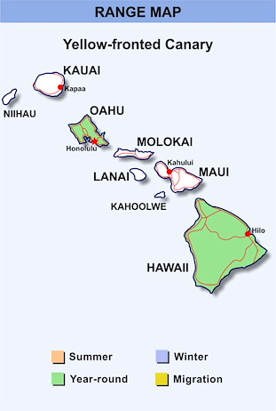Range Map Hawaii for Yellow-fronted Canary