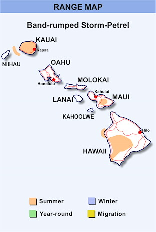 Range Map Hawaii for Band-rumped Storm-Petrel