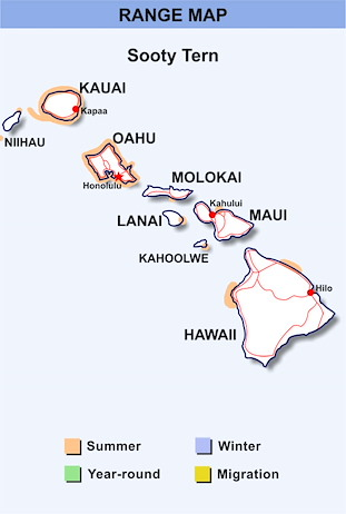 Range Map Hawaii for Sooty Tern