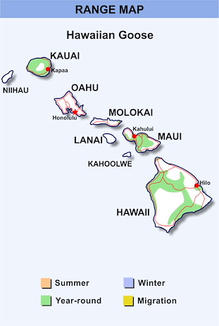 Range Map Hawaii for Hawaiian Goose