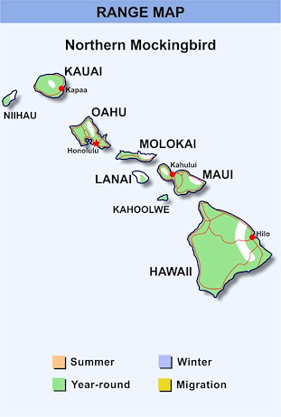 Range Map Hawaii for Northern Mockingbird