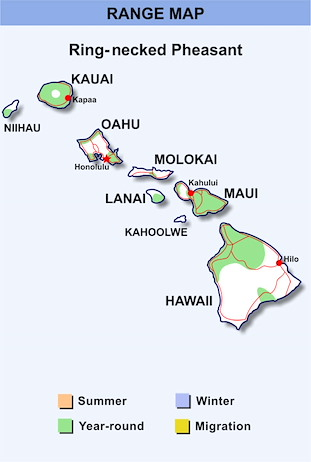 Range Map Hawaii for Ring-necked Pheasant