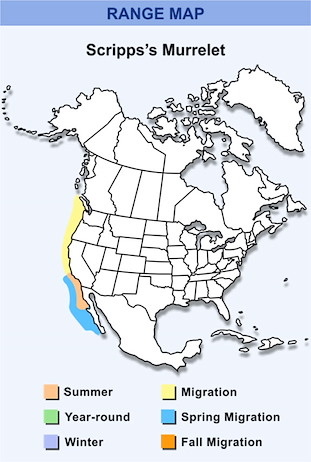 Range Map for Scripps's Murrelet HD
