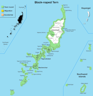 Range Map Palau for Black-naped Tern