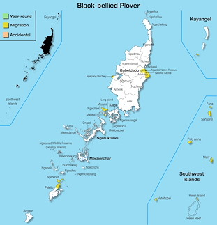 Range Map Palau for Black-bellied Plover