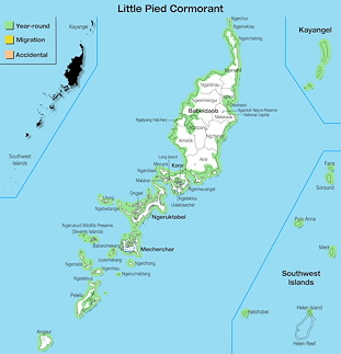 Range Map Palau for Little Pied Cormorant