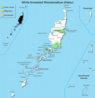 Range Map Palau for White-breasted Woodswallow (Palau).jpg