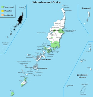 Range Map Palau for White-browed Crake
