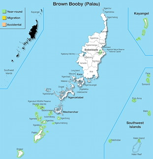 Range Map Palau for Brown Booby (Palau).jpg