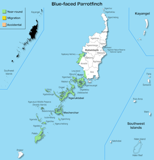 Range Map Palau for Blue-faced Parrotfinch.jpg
