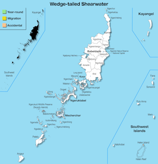 Range Map Palau for Wedge-tailed Shearwater.jpg