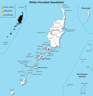 Range Map Palau for White-throated Needletail.jpg