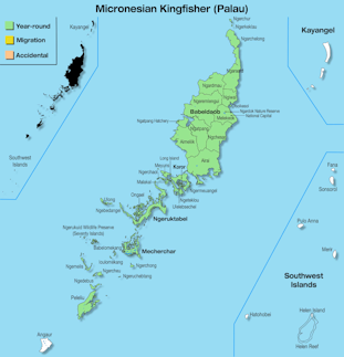 Range Map Palau for Micronesian Kingfisher (Palau).jpg