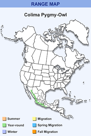 Range Map for Colima Pygmy-Owl.png